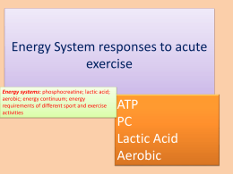 Energy system - Responses to exercise PPT