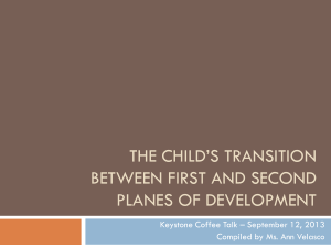 The child*s transition between first and second Planes of development
