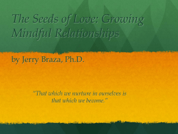 Power Point: Jerry Braza