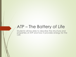 ATP * The Battery of Life