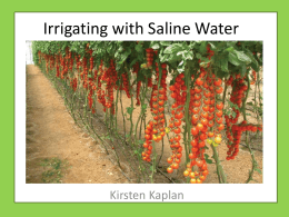 Irrigating with Saline Water