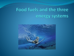 Chapter 5 Food fuels and the three energy systems