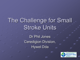Phil Jones The Challenge for Small Stroke Units.pp