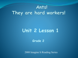 Ants are Hard Workers Powerpoint