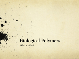Biological Polymers
