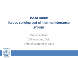 ISSAI 4000: Issues coming out of the maintenance Groups