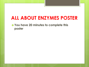 All about Enzymes Essay - PHS Pre