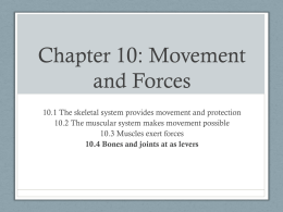 Chapter 10: Movement and Forces - Westerly School Middle School
