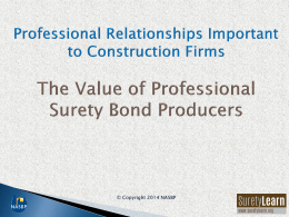 Who Are Professional Surety Bond Producers?