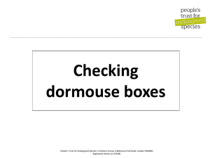 Checking dormouse boxes ppt - Peoples Trust for Endangered