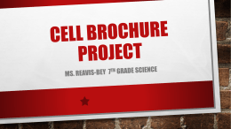 Cell Brochure Project - delaniereavis-bey
