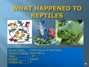 lesson-9 what happened to the reptiles