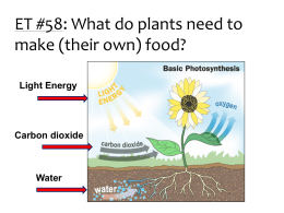 Photosynthesis Lab Preparation Information 2014