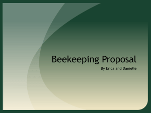Bee Keeping Proposal