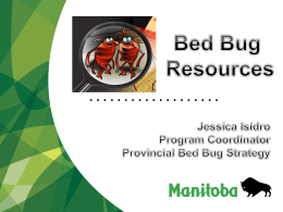 Provincial Bed Bug Strategy Initiatives - Manitoba Non