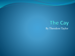 The Cay story elements powerpoint