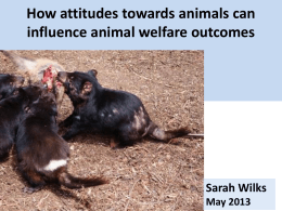 How attitudes towards animals can influence animal welfare outcomes