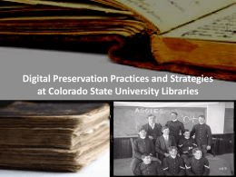 Digital Preservation Practices and Strategies at