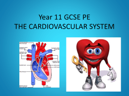 CV SYSTEM for GCSE PE lesson Year 11 tomorrow