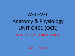 AS LEVEL Anatomy & Physiology UNIT G451 (OCR)