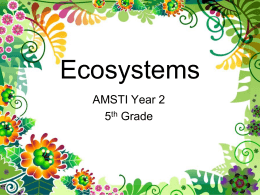 Ecosystems PPT