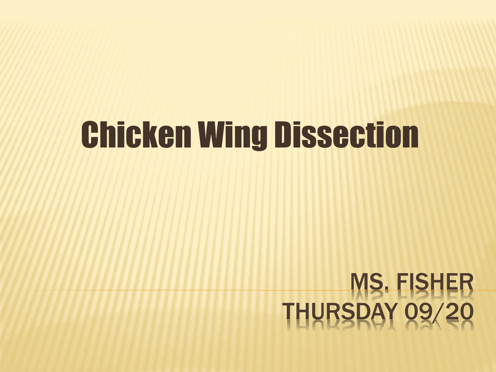 Chicken Wing Dissection Wings Diagram 005398290 1 428958ef18eac3ac22e10ebb8b6ce5b8
