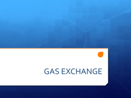 chapter 11 - gas exchange