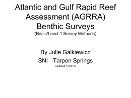 Atlantic and Gulf Rapid Reef Assessment (AGRRA
