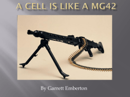 A cell is like an M60E4