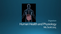 Human Health and Physiology Digestion, Student