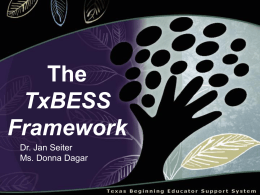 The TxBESS Framework