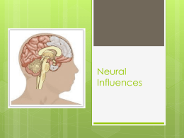 Neural Influences-Holly, Jaydn, Andrew, Oak, Bryan - ITL