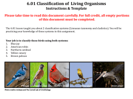 6.01 Classification of Living Organisms Instructions