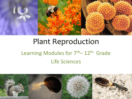 Plant Reproduction Workshop - UCI