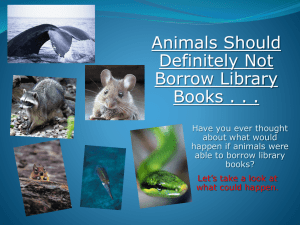 Animals Should Definitely Not Borrow Library Books!