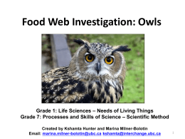 Food Chain and Scientific Method Owls 2011 Final