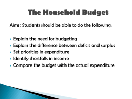 The Household Budget
