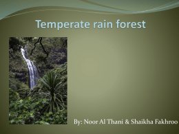 Temperate rain forest pp