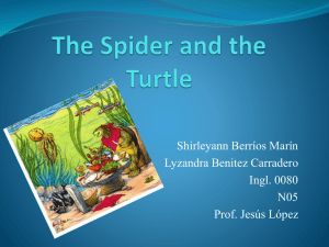 Presentation The Spider and the Turtle SBM