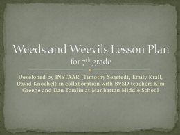 Weeds and Weevils Lesson Plan for 7th grade