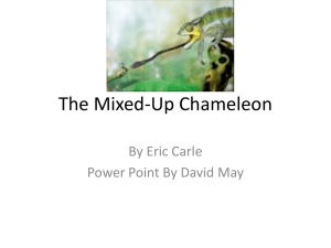 The Mixed- Up Chameleon