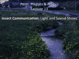 Pests, Plagues & Politics