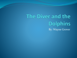 The Diver and the Dolphins