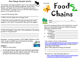 Food Chains activity sheet