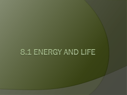 Biology Ch 8 Photosynthesis 8 1 Energy And Life Think About It