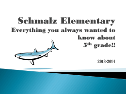 Schmalz Elementary Everything you always wanted to know about