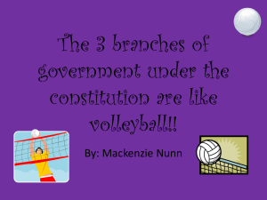 The 3 branches of government under the constitution