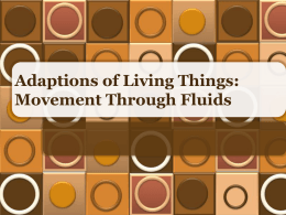 Adaptions of Living Things: Movement Through Fluids