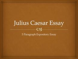 julius caesar essay question