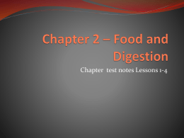 Chapter 2 * Food and Digestion